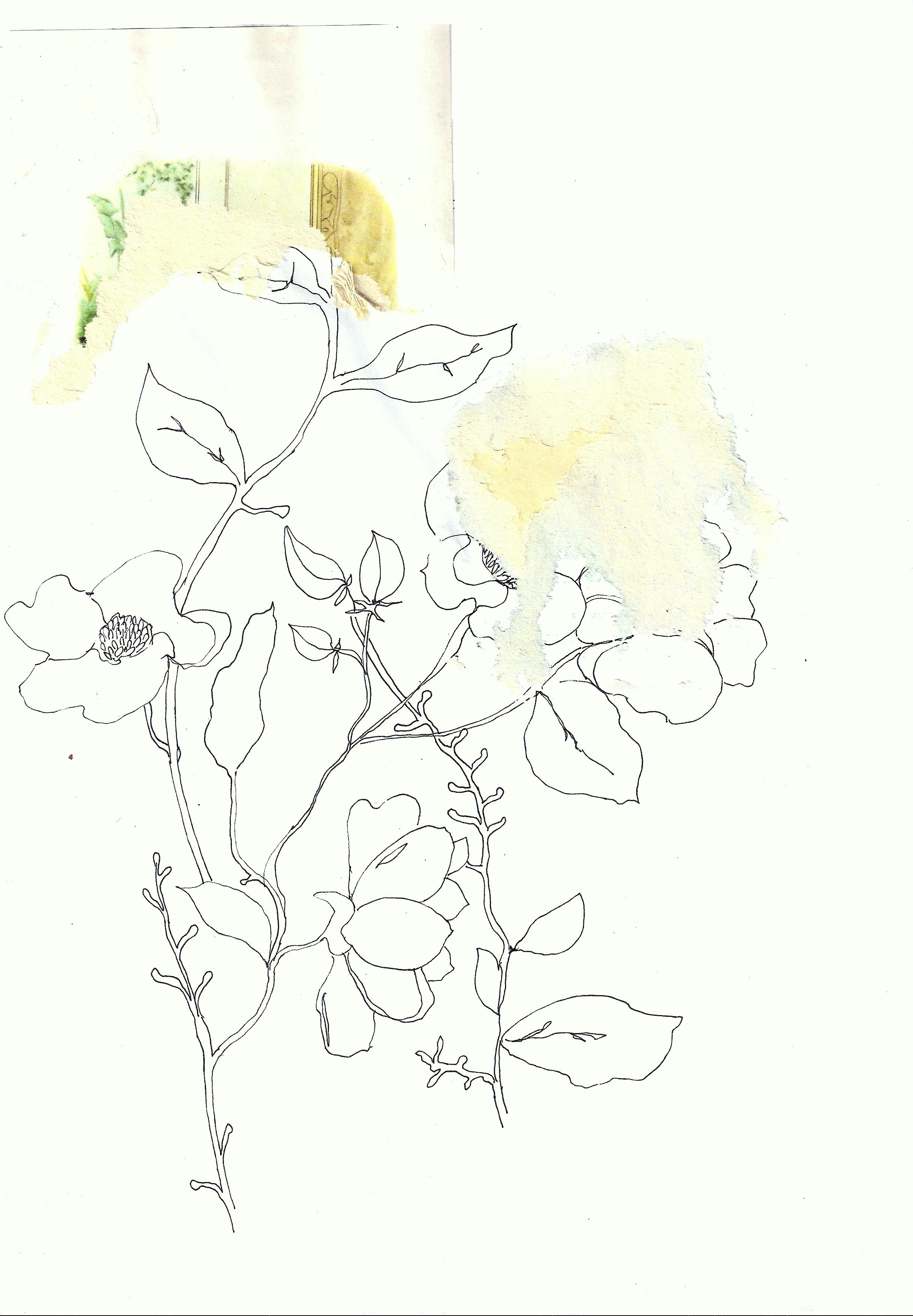 Line Art Flower : Line drawing flower with vintage collage art on the brink